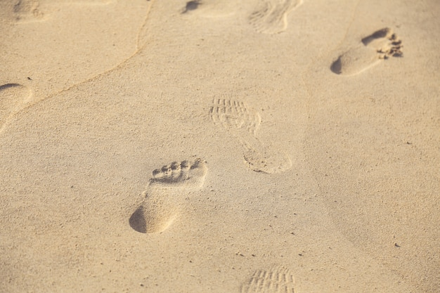 Various footprints on the sand