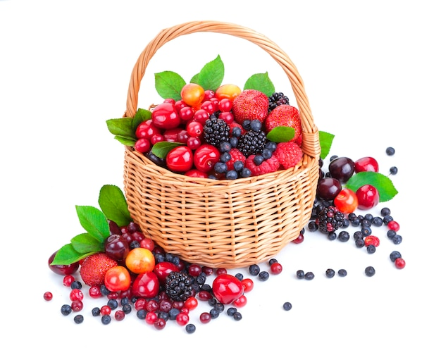 Various forest berries in basket isolated on white
