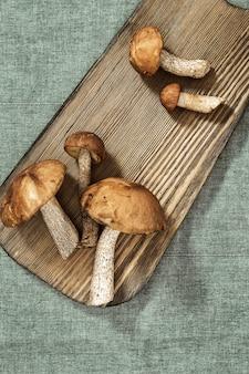 木製の様々な森の食用キノコ。アカエノキンチャクチ(ヤマイグチ)