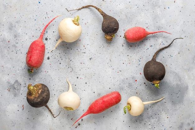 Vari ravanelli freschi, ravanelli bianchi, ravanelli rosa lunghi e ravanelli neri.