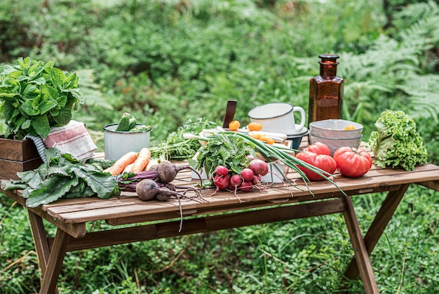 Various fresh vegetables on the wooden table. bio food concept.