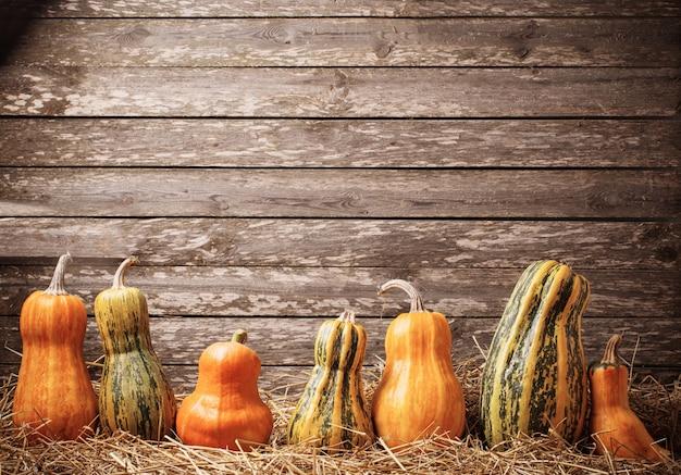 Various pumpkins on wooden surface