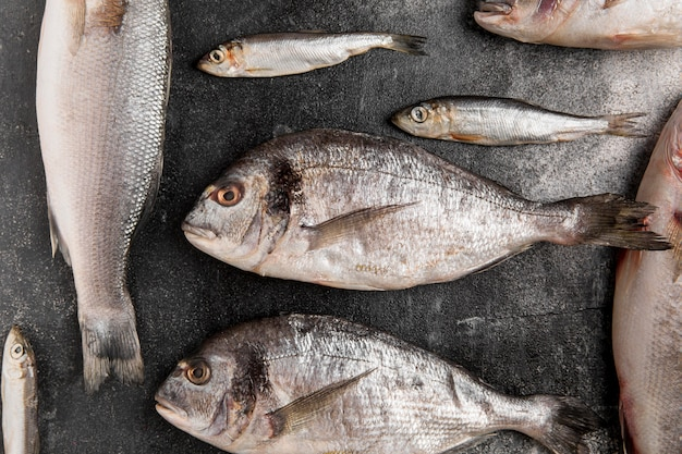 Вид сверху различных серебряных морепродуктов