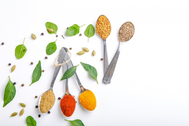 Various spices in  spoons on white background. top view with copy space.