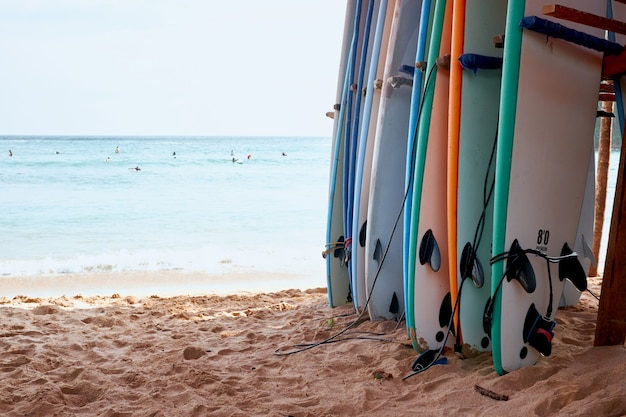 Various surf board on sand beach ocean background
