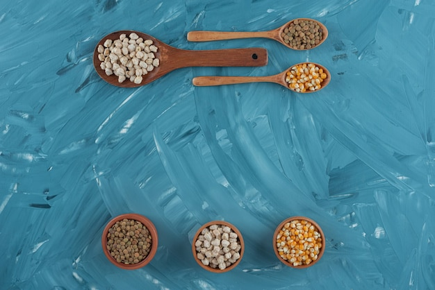 Various types of beans, cereals, corns and lentils placed in wooden spoons .