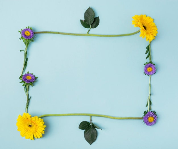 Various types of flowers and leaves forming a natural frame