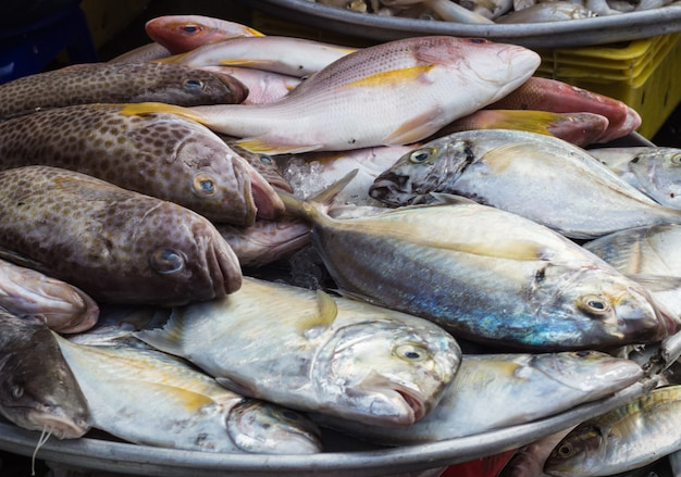 Various  types of sea fish on the market