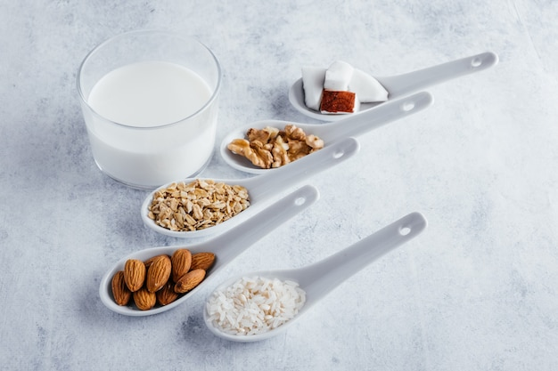 Various types of vegetable milk coconut milk almond milk walnut milk rice milk and oat milk