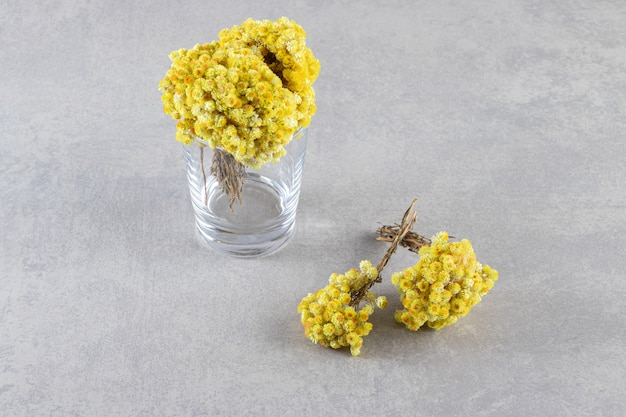 Vase with beautiful yellow flowers placed on stone background.