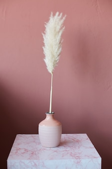Vase with a fluffy plant on a marble table against a pink wall