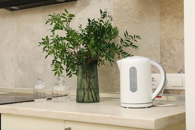 Vase with plant and electric kettle on kitchen table