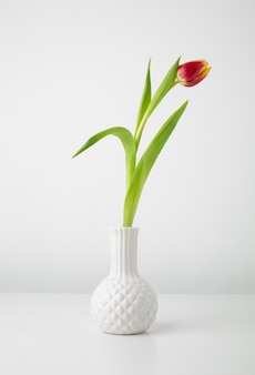Vase with tulip on desk