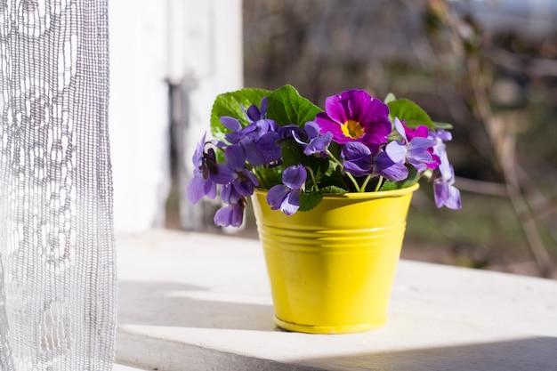 창턱에 제비꽃이있는 꽃병