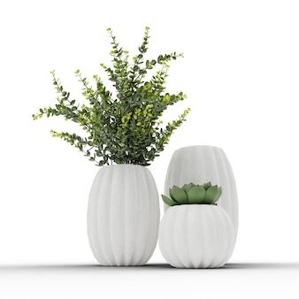 白い背景の上の植物と多肉植物の花瓶3dイラスト