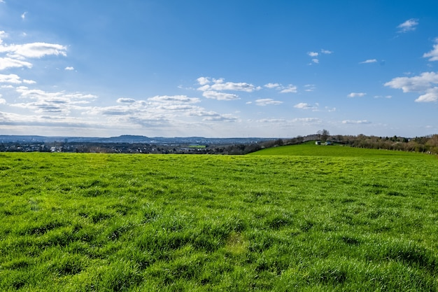 Обширная зеленая долина с голубым небом в дневное время