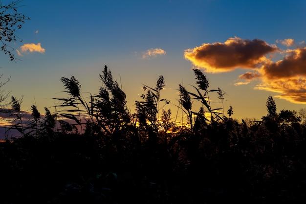 Огромные оранжевые крапчатые облака образуют чашу в осеннем закатном небе в полупустынной чаше форма осени