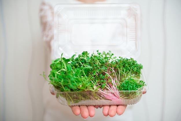 ビーガンと健康的な食事の概念。サラダ用のマイクログリーンのミックス。