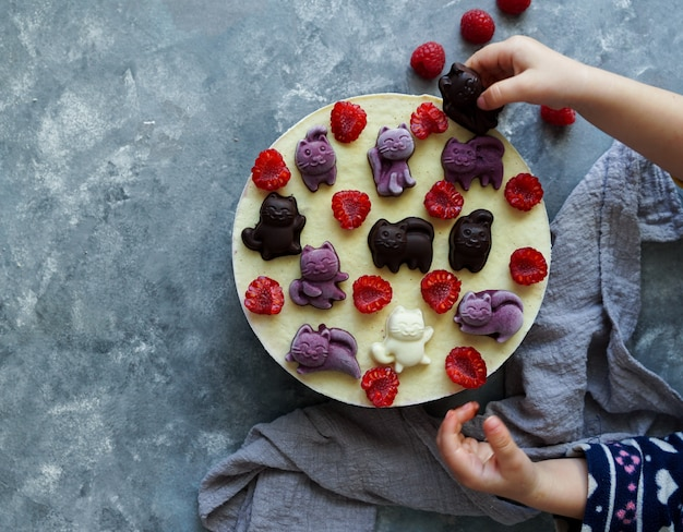 Vegan cakes for children , with  fruits and berries, decorated with chocolate cats