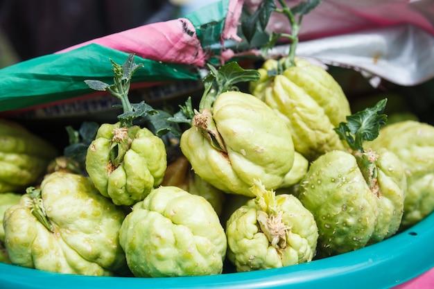 Vegetable: bitter melon (balsam apple, balsam pear, bitter cucumber, bitter gourd, bitter