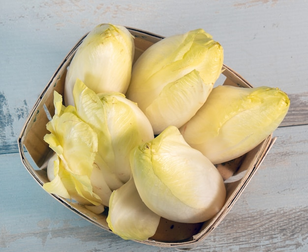 Vegetable organic  endives from france or belgium