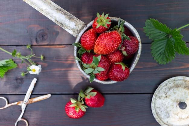 Овощи и фрукты на темном фоне