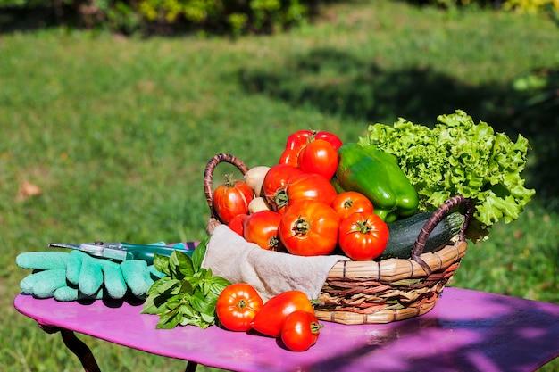 Овощи в корзине под солнечным светом