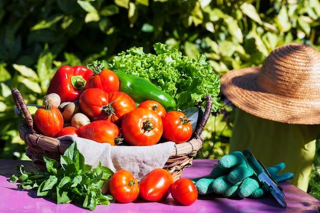 日光の下でバスケットに入った野菜