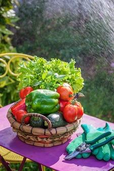 庭のテーブルの上の野菜