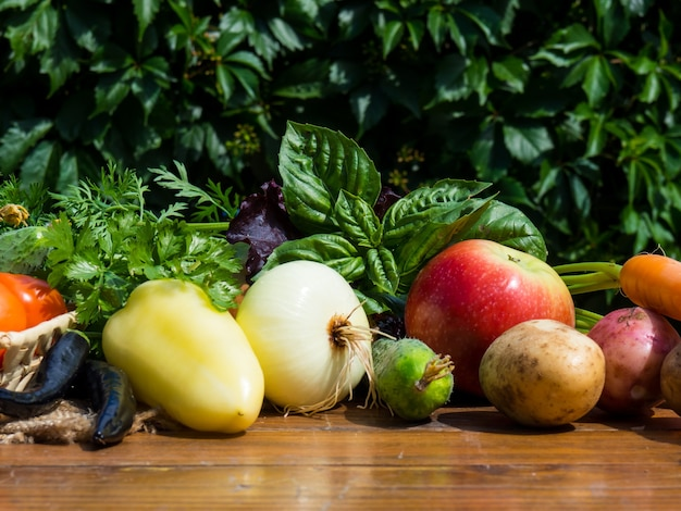 Vegetables on a wooden table. bio healthy food, herbs and vegetables from farm plantations.