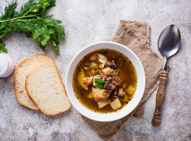 Vegetarian  soup with mushroom and vegetable