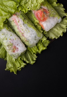 Vegetarian spring rolls with vegetables on black with copy spaces