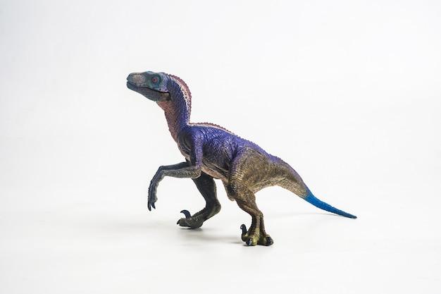 白い背景の上のvelociraptor