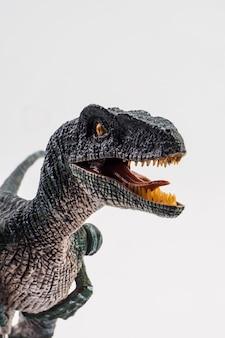 Velociraptor、白い背景の上の恐竜