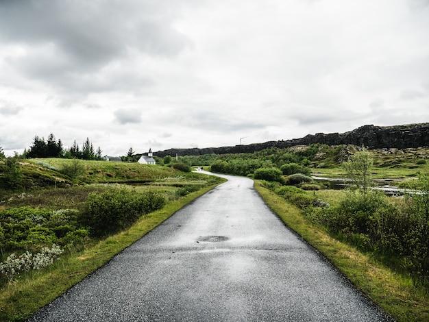 Strada verde verdeggiante in islanda