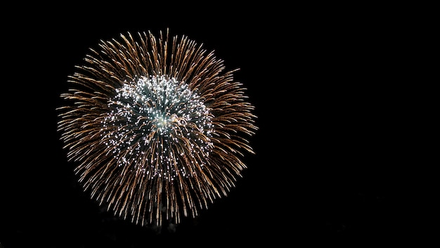 Veriety colorful fireworks on the night sky. one flash of yellow salute
