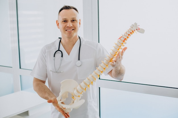 人工脊椎を保持している椎骨理学療法士