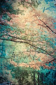 Вертикальные фоновые ветви деревьев с желтыми листьями в осеннем фильтре