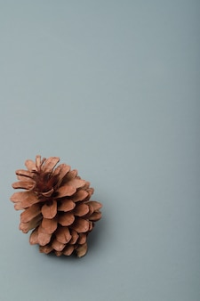 Vertical background with space to write and a pine cone