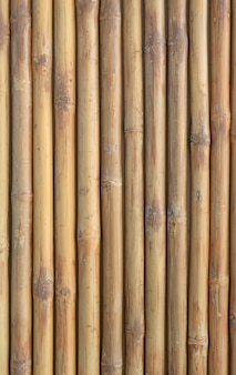 Vertical bamboo fence wall background.