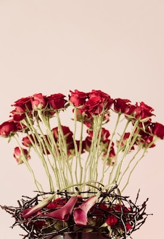 Vertical  of beautiful red rose flowers