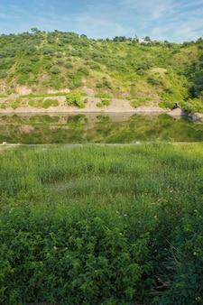 Вертикальный красивый снимок зеленого поля и озера с холмом