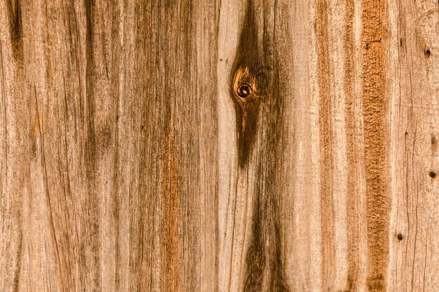 Vertical brown wooden planks with twigs
