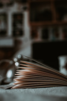 Vertical close up shot of open book pages with blurred