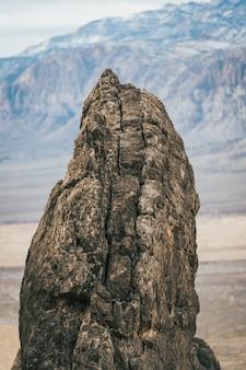 작은 갈색 바위의 수직 근접 촬영 샷