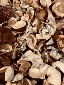 마른 가을의 수직 근접 촬영 샷 지상에 나뭇잎