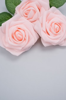 Colpo verticale del primo piano delle rose rosa isolate su una priorità bassa blu con lo spazio della copia
