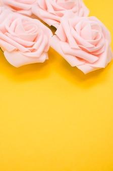 Vertical closeup shot of pink roses isolated on a yellow background with copy space