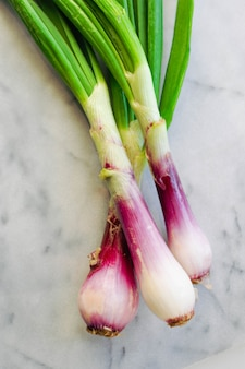 Vertical closeup shot of spring onions