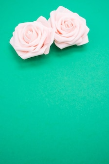 Colpo verticale del primo piano di due rose rosa isolate su una priorità bassa verde con lo spazio della copia